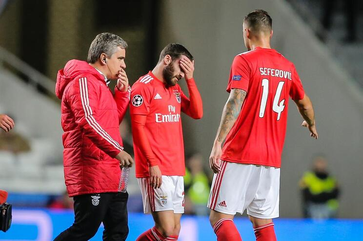 Lesão muscular afasta Rafa dos próximos jogos do Benfica