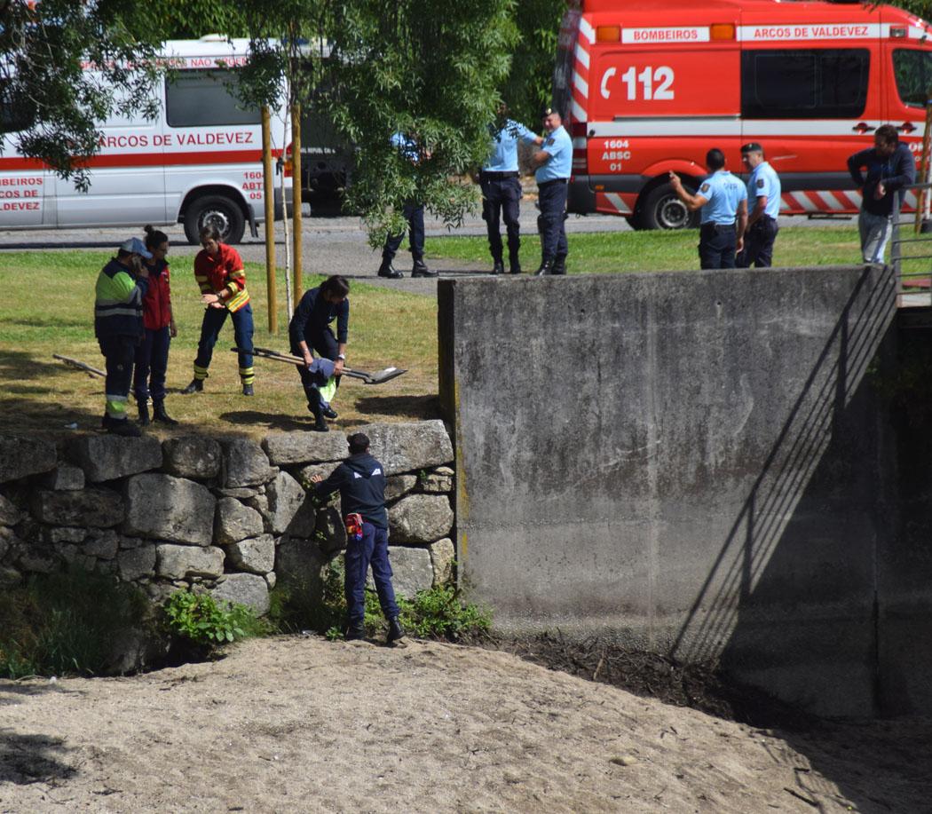 Empresas Em Arcos De Valdevez câmara abre inquérito a morte de funcionário durante ação de