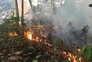 Incêndios na Amazónia aumentaram 83% este ano