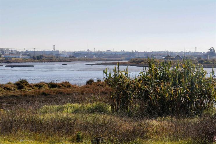 ANA concorda com maioria das medidas ambientais para o aeroporto do Montijo