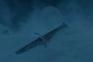 """""""Luta pelos vivos"""". Novo trailer da última temporada de A Guerra dos Tronos"""