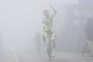 Jóni Brandão ergue os braços no nevoeiro da Torre após triunfo inédito