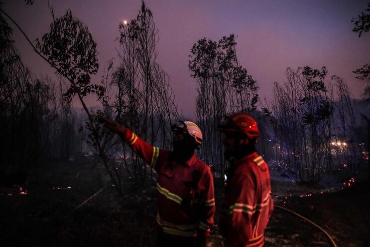 Um terço dos fogos deste ano tiveram como causa queima e queimadas
