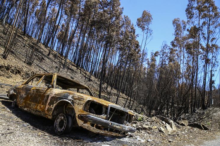 Reserva de alimentos e água são as principais medidas da população em incêndios