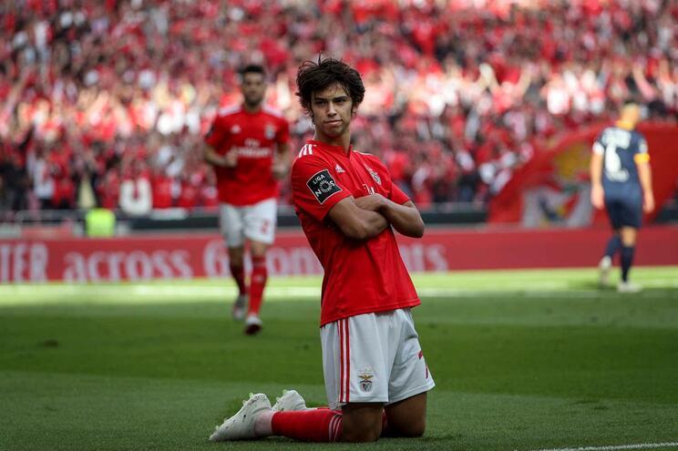 Depois de brilhar no Benfica, João Félix é esperado no Atlético de Madrid