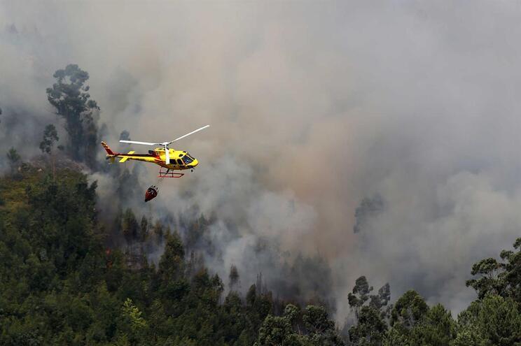 Observatório de incêndios florestais já tem composição