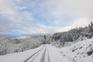 Portugal acorda pintado de branco com a neve trazida pela depressão Dora