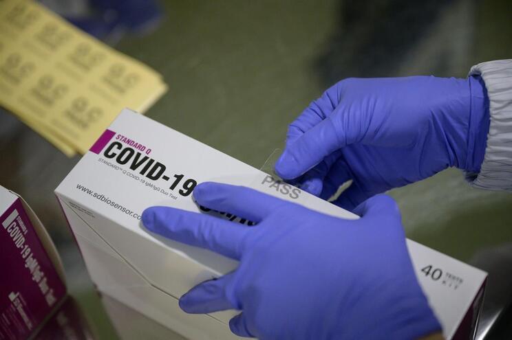 Covid-19 não pode infetar a mesma pessoa duas vezes, dizem cientistas