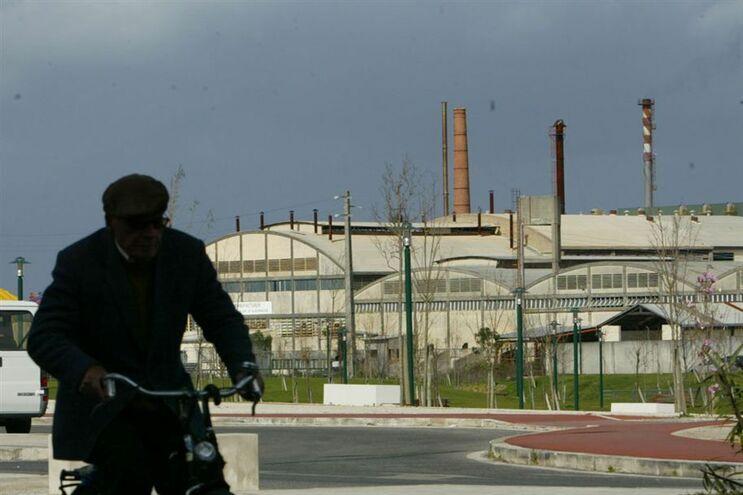 Portugal em 15.º lugar no Índice dos Objetivos de Desenvolvimento Sustentável na UE
