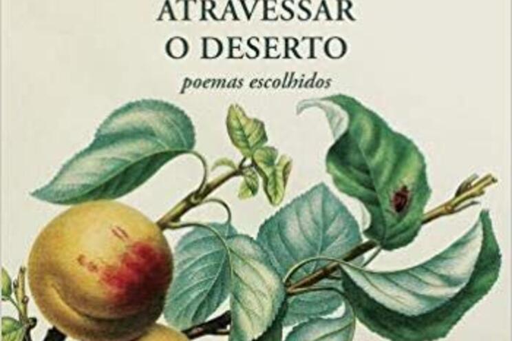 Juan Vicente Piqueras é um dos poetas espanhóis mais lidos dos nossos dias