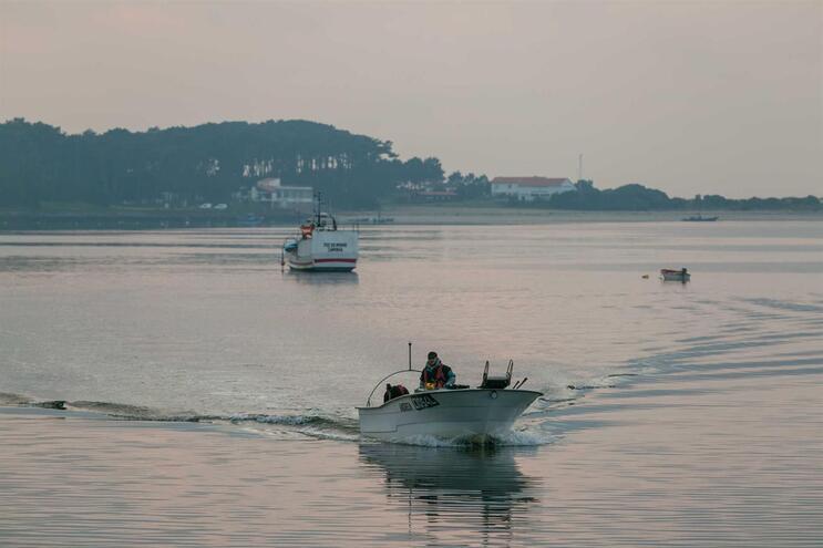 Capitania de Caminha alerta pescadores para lixo nas águas do rio Minho