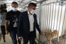 O presidente da Câmara de Santo Tirso, Alberto Costa, visitou os cães resgatados do incêndio no abrigo