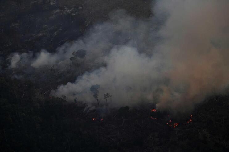 Argentina e Chile oferecem ajuda ao Brasil e Bolívia para combater fogos na Amazónia