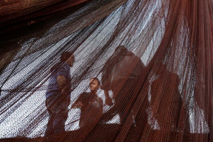 Pescadores vão estar em frente ao Ministério do Mar, em Lisboa