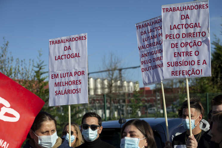 A greve de trabalhadores da Lactogal, na segunda-feira, teve uma adesão de 60% a 70% na fábrica de Modivas