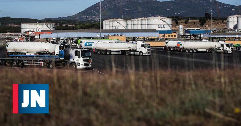 Sindicato desconvoca greve no Terminal de Contentores do porto de Sines