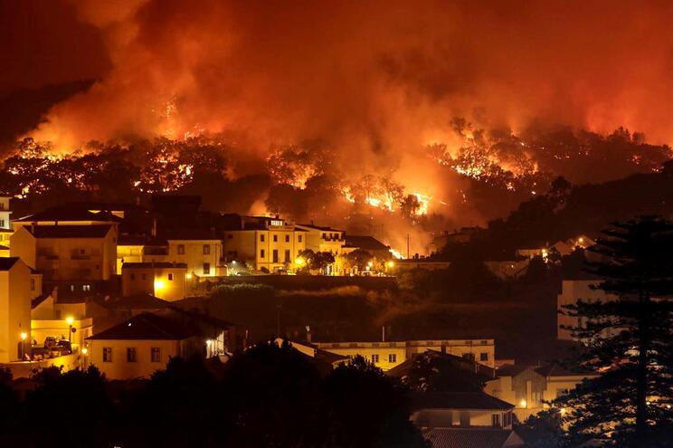 Produtores florestais algarvios dizem esperar há meses por plano de prevenção na zona do incêndio