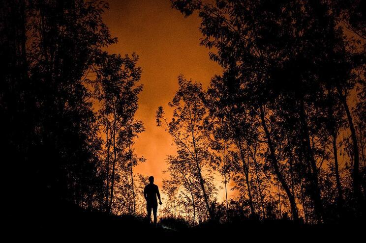 Detido suspeito de atear fogo florestal em Almodôvar