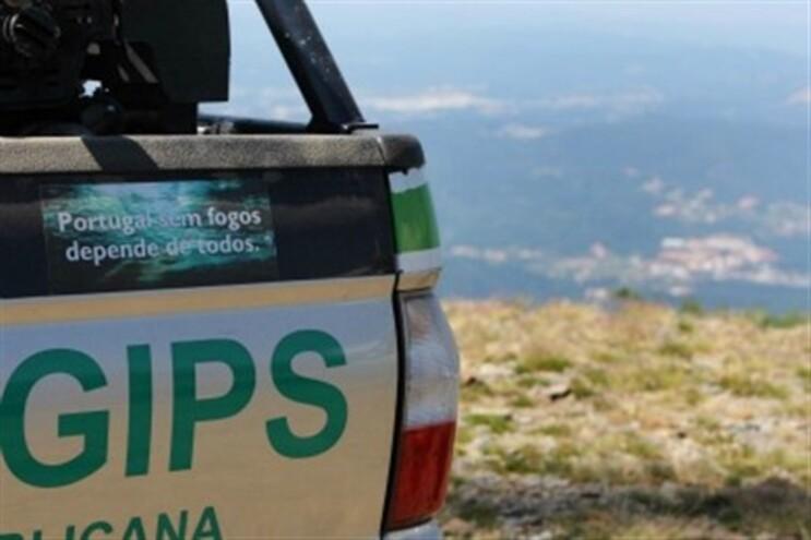 OS GIPS foram criados em 2006 pelo então ministro António Costa