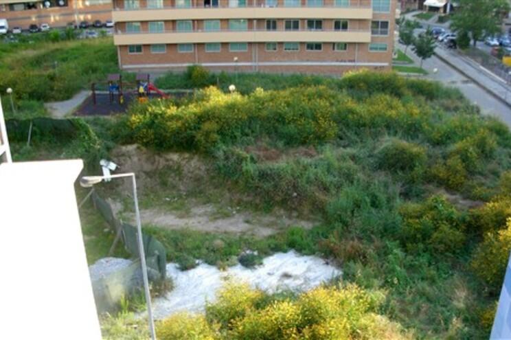 Estado caótico da urbanização de Santo Adrião