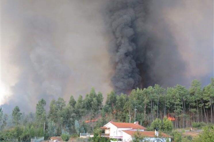 Fogo com mais de 24 horas dominado em Águeda deixa centenas de hectares ardidos