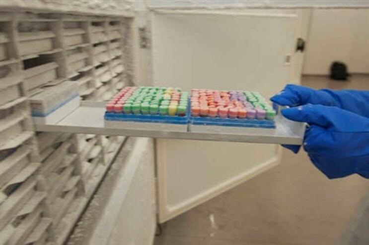 Anunciada primeira vacina terapêutica contra cancro do pulmão
