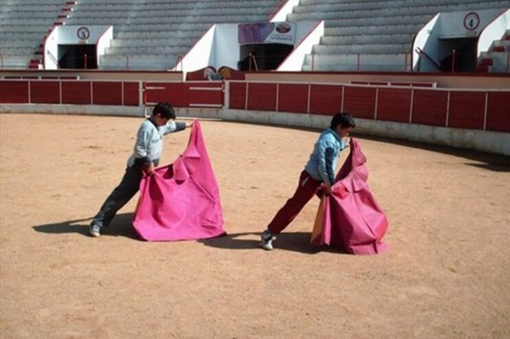 Resultado de imagem para escolas de toureio em portugal
