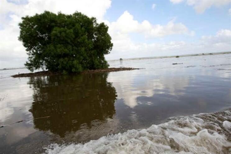 Proteção Civil de Santarém aciona Plano Especial de Emergência para cheias