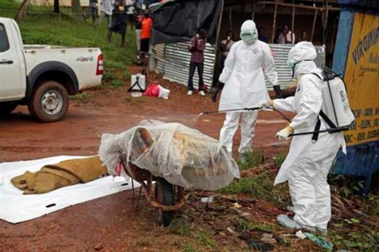 Ébola já causou mais de 900 mortos desde março