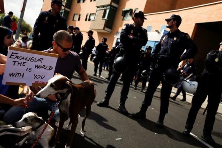 Uma mulher ficou ferida, esta quarta-feira, em confrontos com a polícia