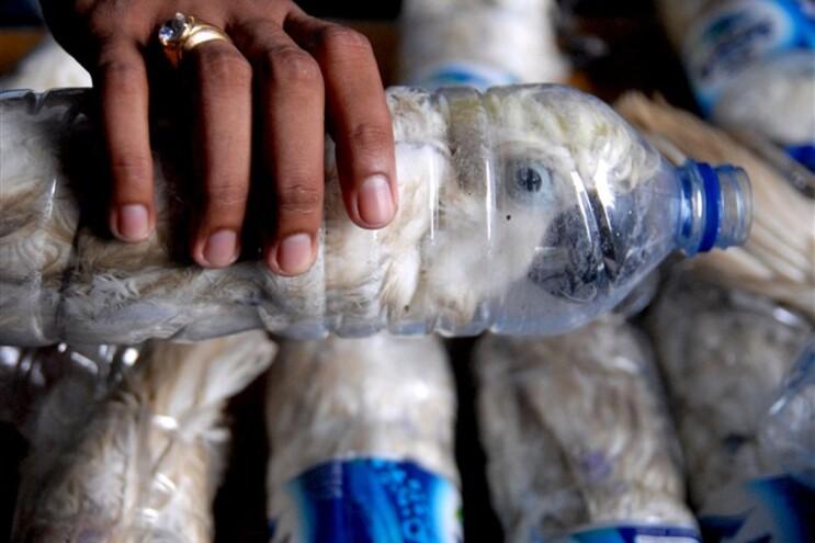 Aves descobertas pelas autoridades indonésias