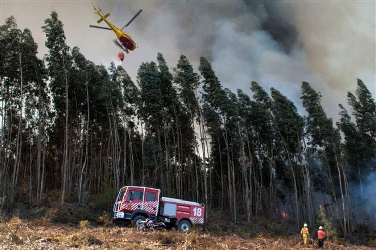 Este ano ocorreram dois incêndios que ultrapassaram os 500 hectares de área florestal ardida