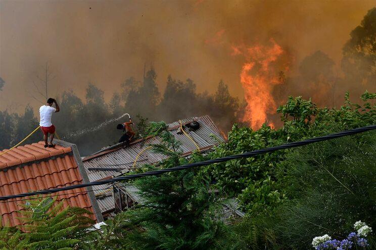 Chamas continuam a lavrar em várias zonas da Madeira
