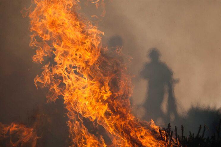 Fogo no distrito de Bragança motiva corte da Estrada Nacional 221