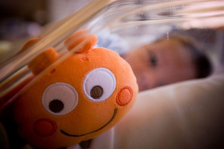Em 2016 nasceram em Portugal 87126 bebés