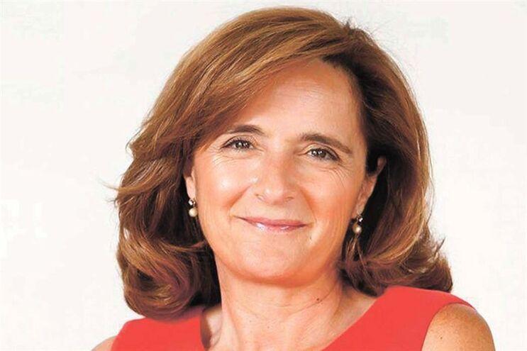 Helena Freitas: Políticas públicas de sustentabilidade iriam ajudar as micro e pequenas empresas do interior