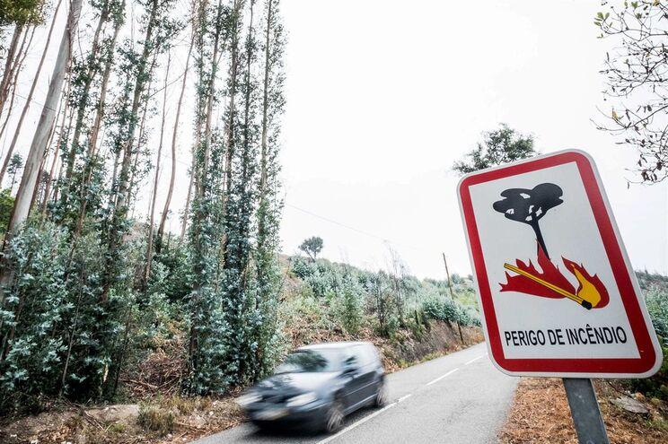 Em Mação todas as aldeias têm motobombas e grupos de autodefesa