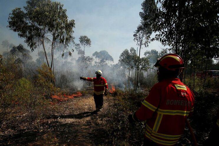 """""""Freguesia de Belver tem sete mil hectares e arderam cinco mil"""""""
