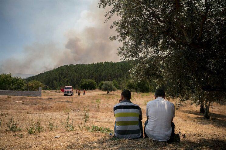 Grandes incêndios que lavraram na região centro estão em fase de rescaldo