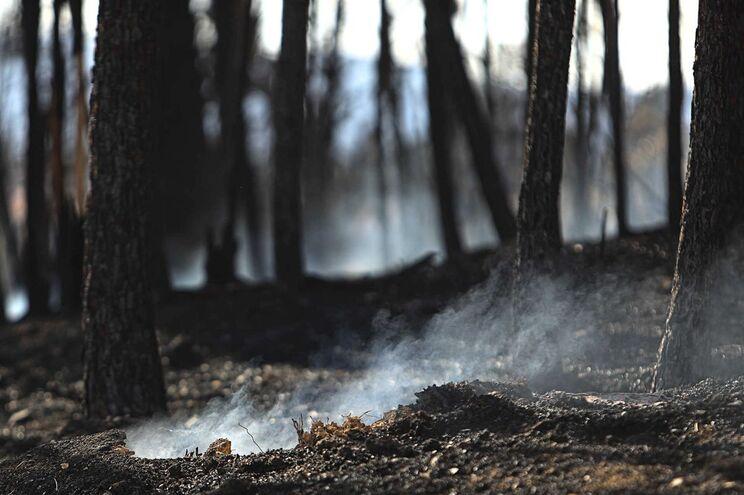 Durante os incêndios são recorrentes as dificuldades de comunicação nas zonas afetadas