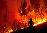 Incêndios forçam evacuação de 41 pessoas em três aldeias de Oliveira do Hospital