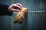 """Desde a criminalização dos maus tratos e abandono dos animais, têm sido detetadas """"formas mais insidiosas"""""""