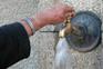 """Governo deve criar legislação que obrigue as entidades locais a """"cumprirem os direitos humanos"""" à água"""
