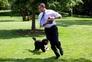 Os melhores momentos dos cães de água portugueses na Casa Branca