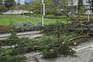 Registadas 62 ocorrência relativas a quedas de árvores e estruturas