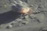 Bombardeamentos na província de Idlib