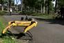 Cão robô patrulha jardins de Singapura para incentivar ao distanciamento social