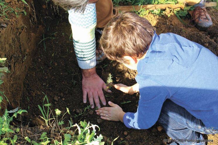 Programa desafia professores e alunos a usarem espaços verdes