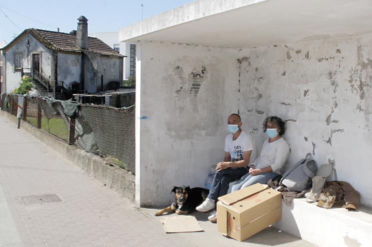 Paulino Vale e Felisbela Machado dormiam numa paragem com o cão e o gato