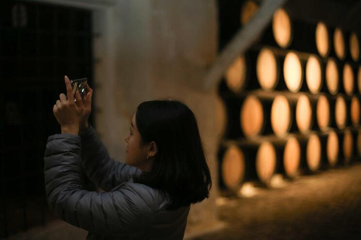 Mais visitantes e investimento nas caves de vinho do Porto